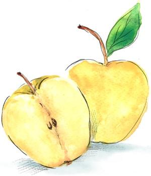 Био ябълки Златна превъзходна