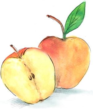 Био ябълки Роял гала
