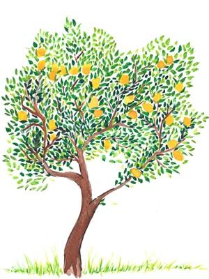 Био лимони